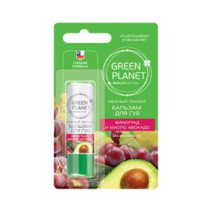 tay da chet moi green planet cua nga Tẩy da chết môi Green planet của Nga chiết suất bơ